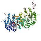 PBB Protein GLA image