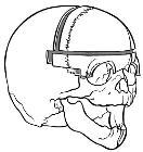 Wiki trigonocephaly1