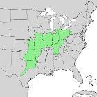Aesculus glabra range map 1