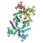 PBB Protein DMD image