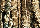 Basma-tobacco-drying