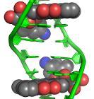 Doxorubicin–DNA complex 1D12