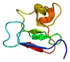 Protein PML PDB 1bor